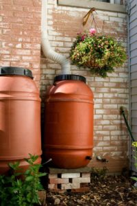 Care for your rain barrel